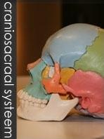 Osteopathie Maastricht Rademaker Osteopaat Maastricht Behandelindicaties zwangeren